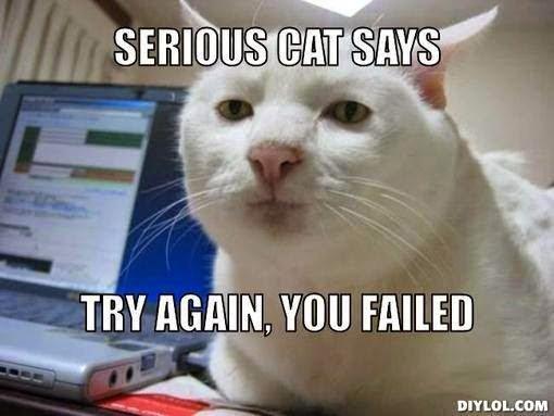Write-Freelance-Indian-Freelance-writers-Serious-cat-try-again-meme-1