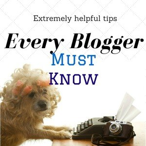 9 Extremely Useful Tips every blogger must know